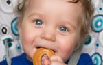 Как обучить и приучить ребенка жевать?