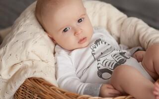 Особенности поведения и воспитания ребенка в 1 год