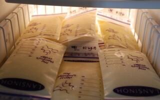 Как хранить сцеженное молочко для грудничка?